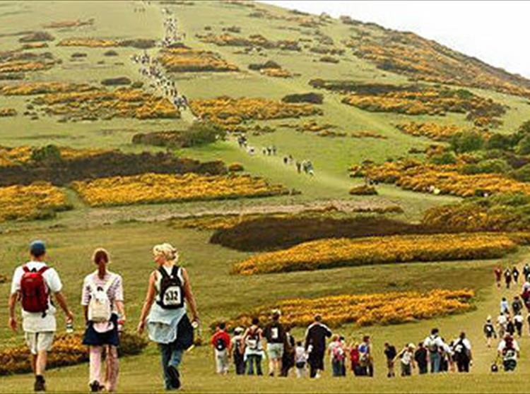 A massive 7,500 walkers took part in the Island's annual Earl Mountbatten Hospice