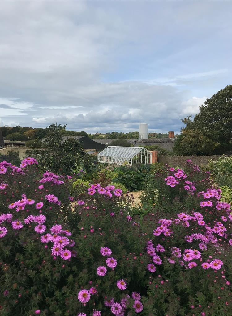 restored victorian walled garden