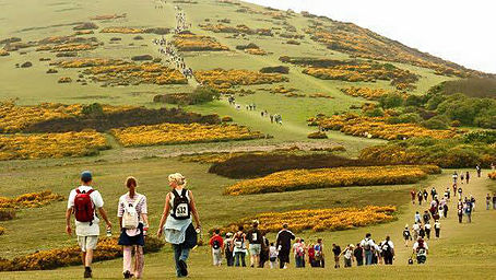 Walk the Wight walkers on Tennyson Down